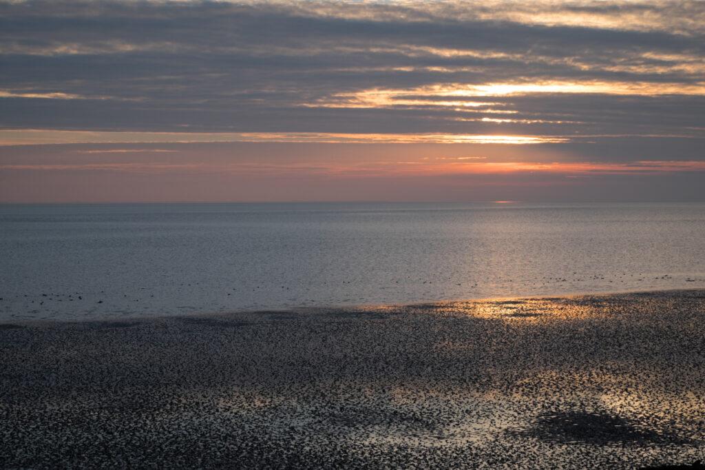 Weitblick im Wattenmeer