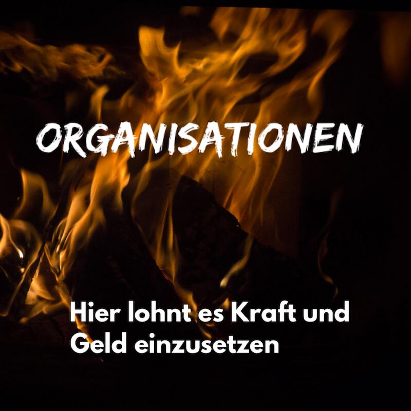 Empfehlungen für NGOs, Vereine, Organisationen für Nachhaltigkeit, Umweltbewusstsein und Transparenz