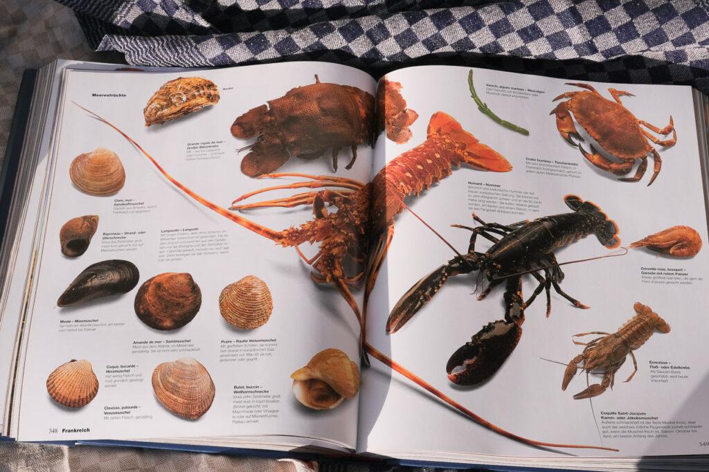 Culinaria das Kochbuch für ganz Europa